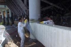 Concrete Beam Reinforcement